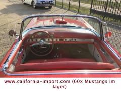 Ford  Thunderbird (+130 classic cars)